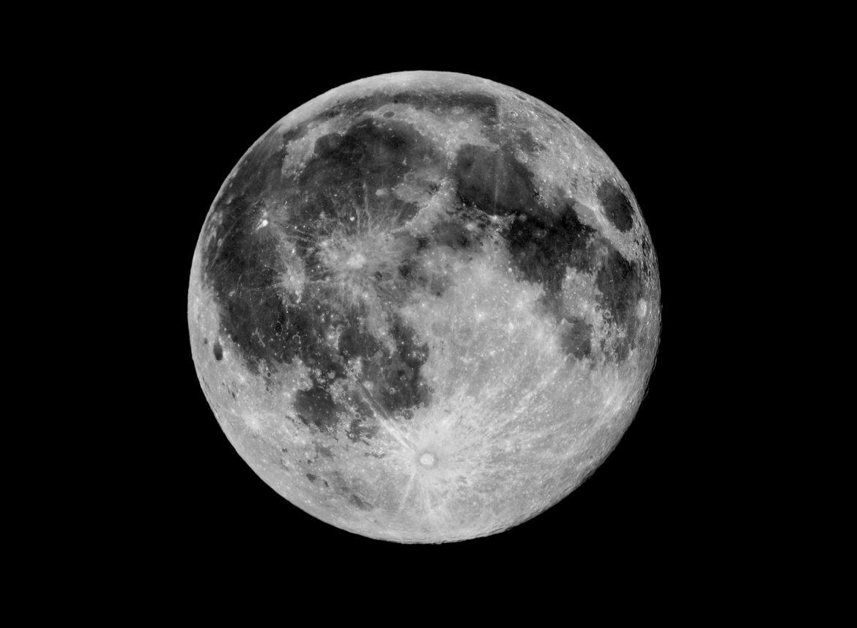 Moon Mosaic, John Gauvreau